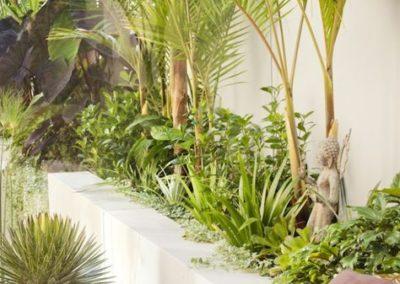 Intérieur jungle