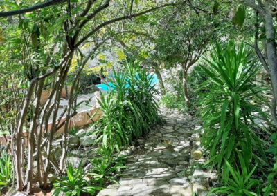 Jardin entre ombre et lumière