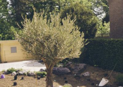 Eikhove - Jardin avec piscine