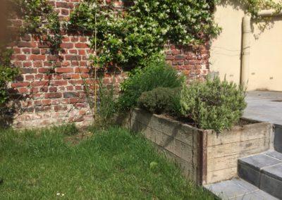 Jardinières et plantes grimpantes