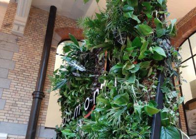 Mur végétal intérieur - Bomonti Tour&Taxis