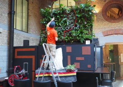 Mur végétal intérieur entretien
