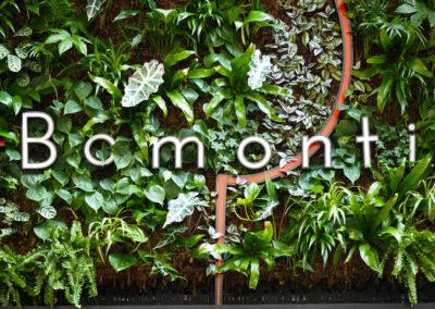 Mur végétal intérieur philo, fougère, tradescantia zebrina, ...
