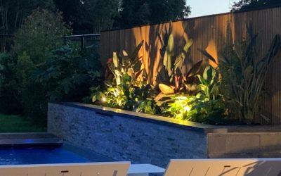 Terrasse composite . Piscine . Jungle