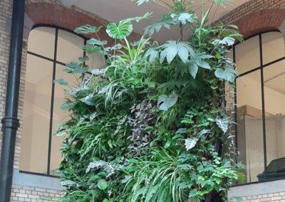 Mur végétal intérieur avec logo éclairé