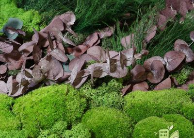 Mur végétal stabilisé - Mousse boule, eucalypthus et fougère
