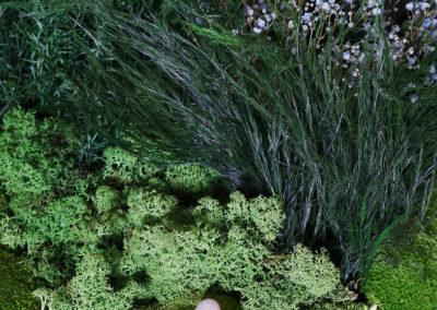 Mur végétal stabilisé - Mousse boule, lichen, gypsofile