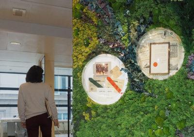 Mur-végétal-stabilisé-spheres-décoratives